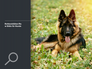 Rohkostdiäten/Raw Diäts für Hunde
