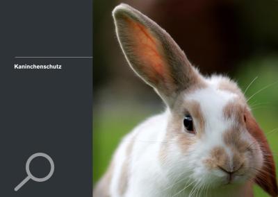 Kaninchenschutz