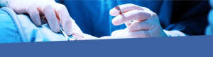 Veterinary surgery image