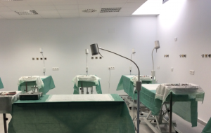 Madrid practical facility