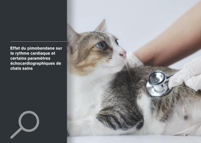 Effet du pimobendane sur le rythme cardiaque et certains paramètres échocardiographiques de chats sains